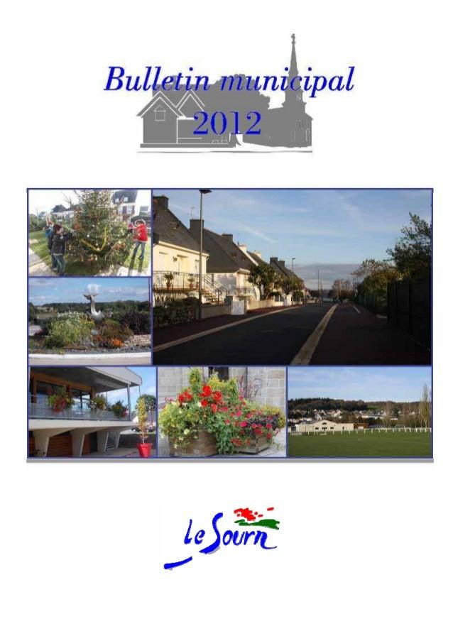 NOM DE LORGANISATIONACCUEIL DÉCEMBRE 2012 Toute l'actualité et les informations pratiques de la commune sur www.lesourn.fr...