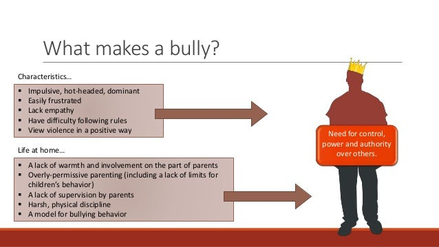 What makes a bully become a bully