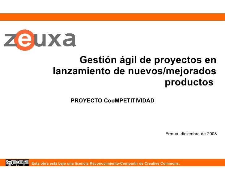 Gestión ágil de proyectos en lanzamiento de nuevos/mejorados productos  PROYECTO CooMPETITIVIDAD Ermua, diciembre de 2008