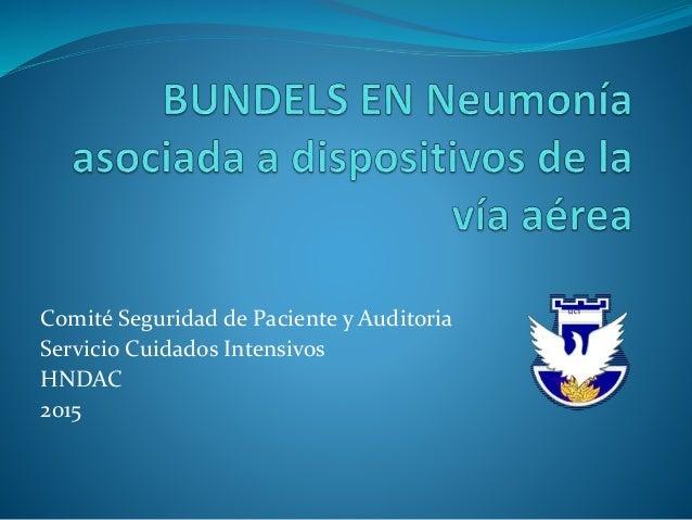 Comité Seguridad de Paciente y Auditoria Servicio Cuidados Intensivos HNDAC 2015 U C I