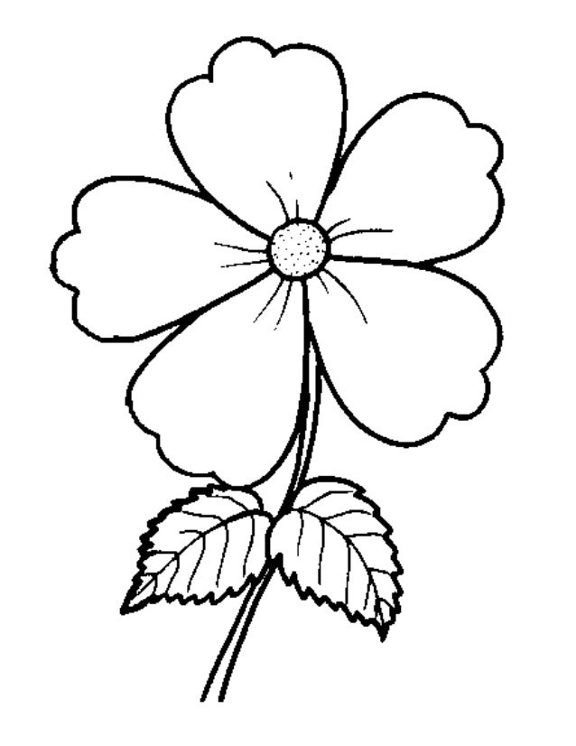 Bunga - Free Colouring Pages