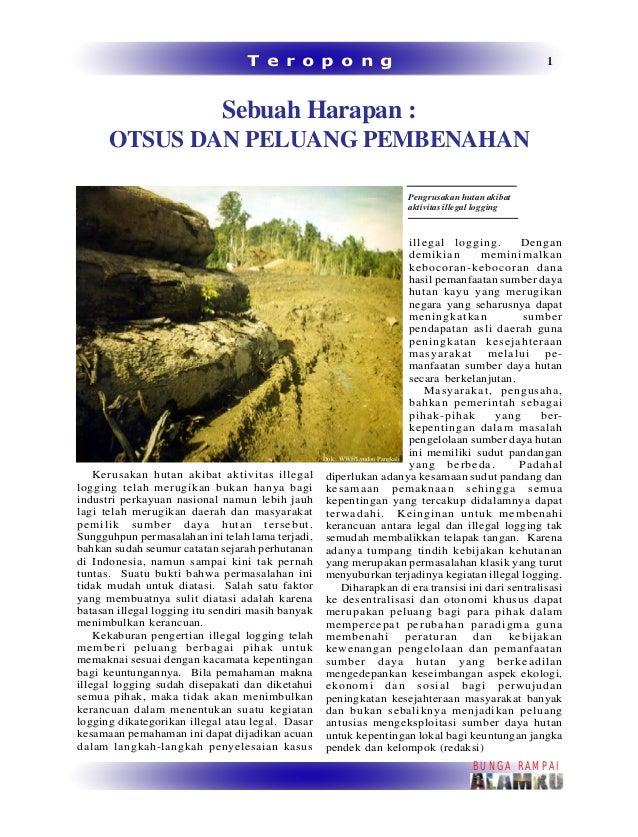 Bunga Rampai Alamku 2007 Hutan Papua