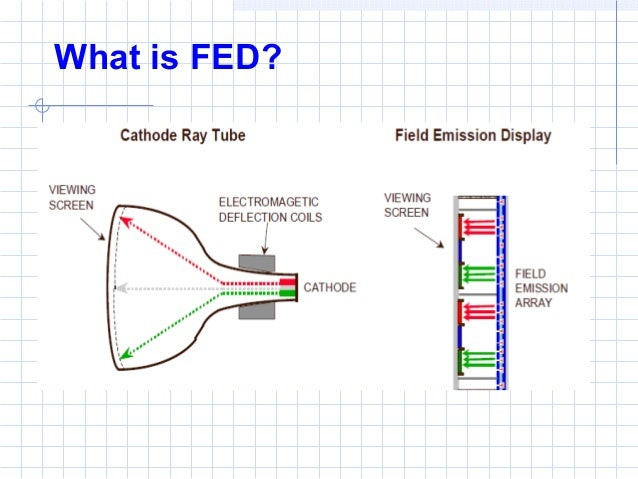What is FED?