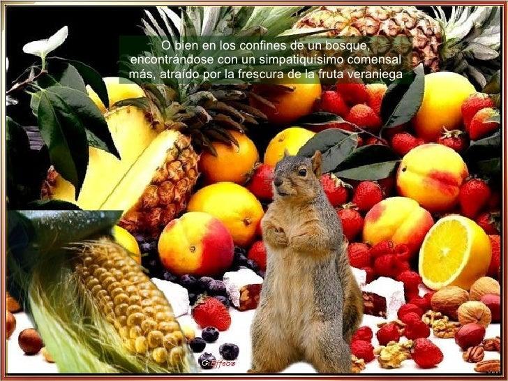 O bien en los confines de un bosque, encontrándose con un simpatiquísimo comensal más, atraído por la frescura de la fruta...