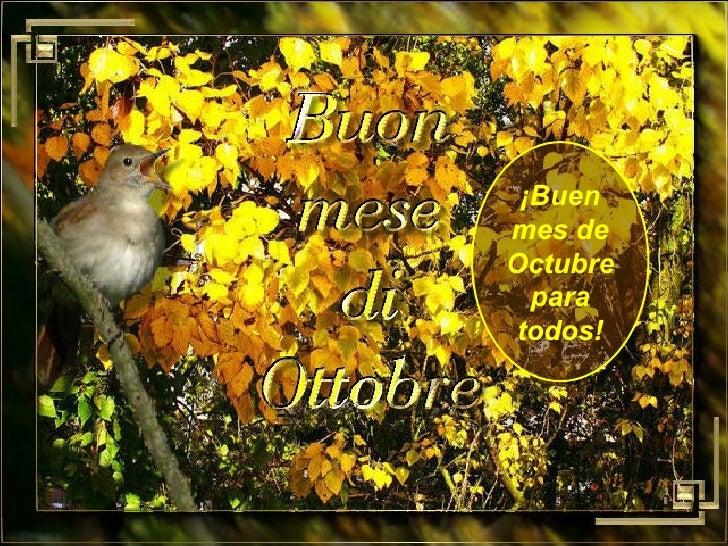 ¡Buen mes de Octubre para todos!