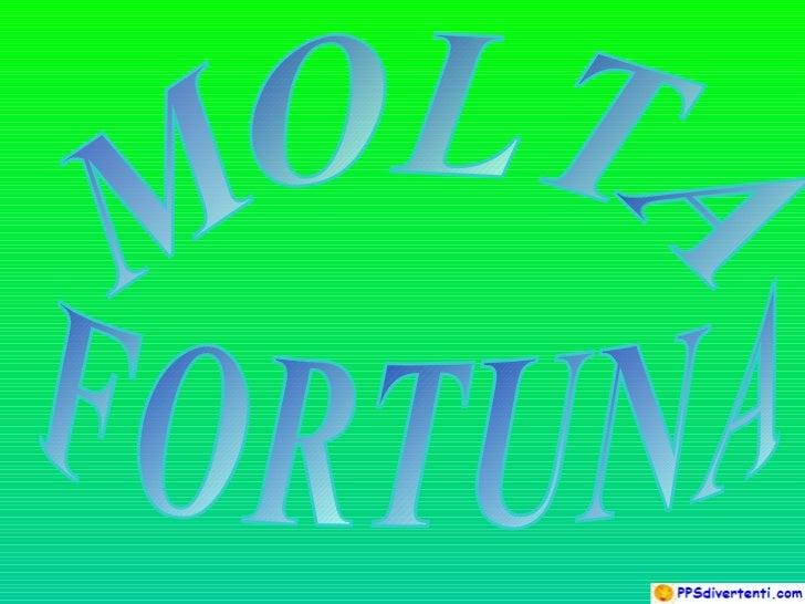 MOLTA  FORTUNA