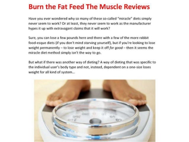 Burn Fat Program
