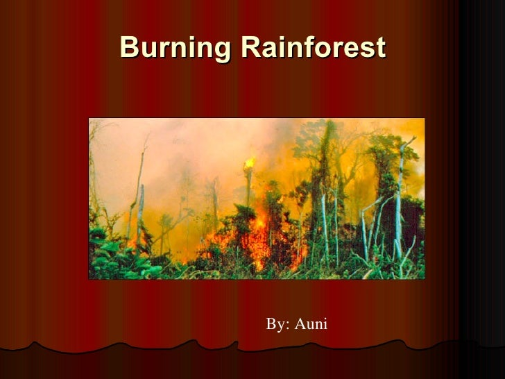 Burning Rainforest By: Auni