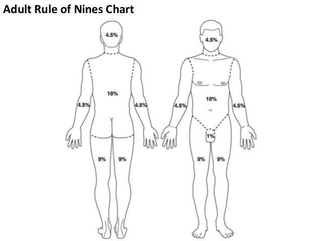 burn bsa diagram wiring diagram img Burn Classification by Depth