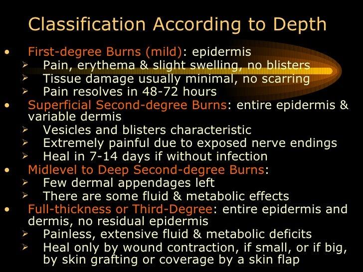 Burns Slide 3