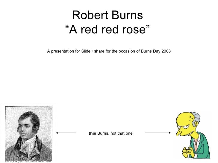 """Robert Burns """"A red red rose"""" A presentation for Slide +share for the occasion of Burns Day 2008 this  Burns,  not that one"""