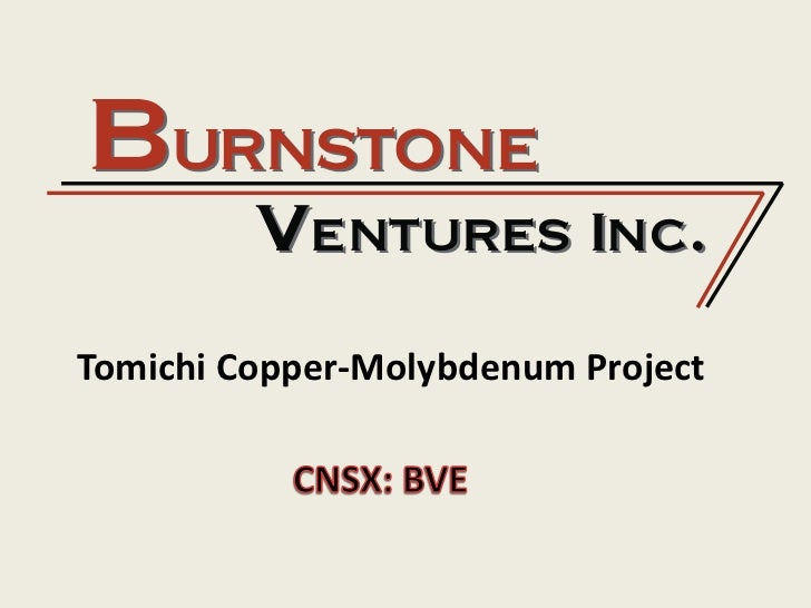 Tomichi Copper-Molybdenum Project <br />CNSX: BVE<br />