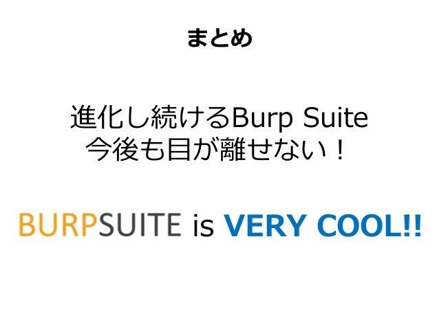 Burp suite wordpress plugin