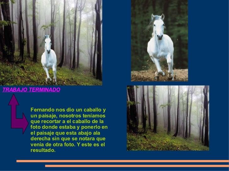 TRABAJO TERMINADO           Fernando nos dio un caballo y         un paisaje, nosotros teníamos         que recortar a el ...