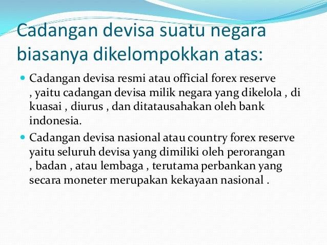 Mgc forex bank negara