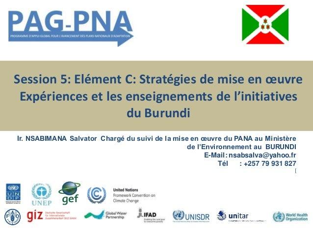 Session 5: Elément C: Stratégies de mise en œuvre Expériences et les enseignements de l'initiatives du Burundi Ir. NSABIMA...