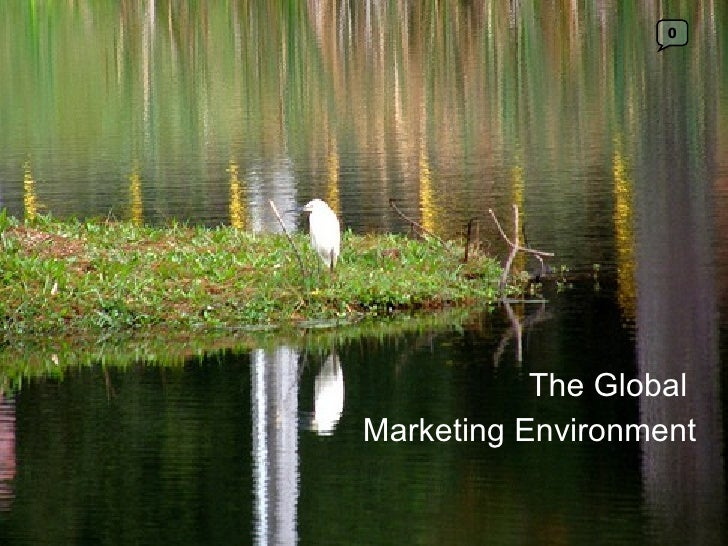 The Global  Marketing Environment 0