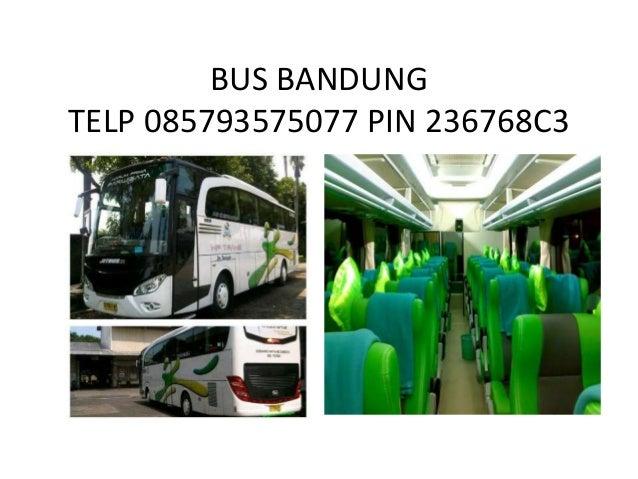 BUS BANDUNG TELP 085793575077 PIN 236768C3
