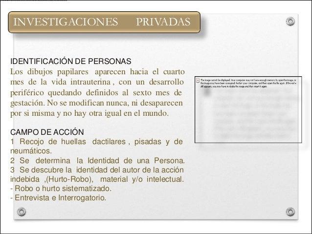 INVESTIGACIONES                    PRIVADASIDENTIFICACIÓN DE PERSONASLos dibujos papilares aparecen hacia el cuartomes de ...