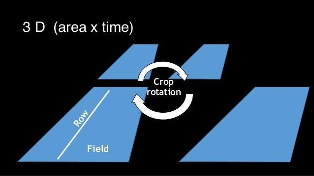 Row Field Crop rotation 3 D (area x time)