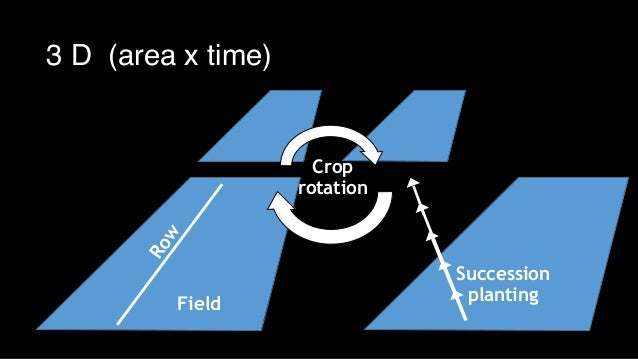 Row Field Crop rotation Succession planting 3 D (area x time)