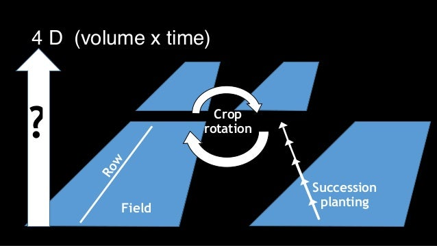Row Field Crop rotation Succession planting ? 4 D (volume x time)