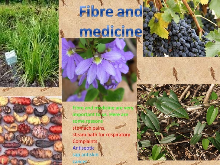 Fibre and medicine are very important to us. Here are some reasons stomach pains, steam bath for respiratory Complaints An...