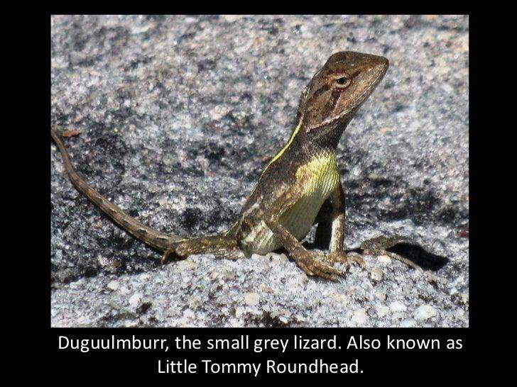 Guurrbi's bush creatures