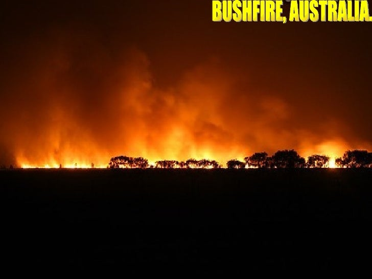 BUSHFIRE, AUSTRALIA.