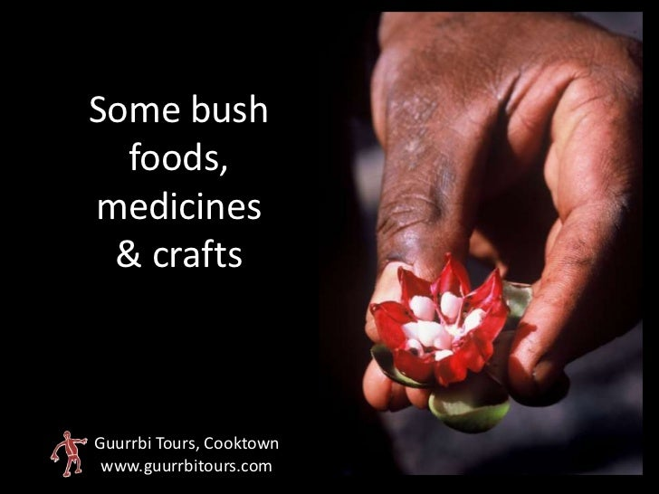 Some bush  foods,medicines & craftsGuurrbi Tours, Cooktown www.guurrbitours.com