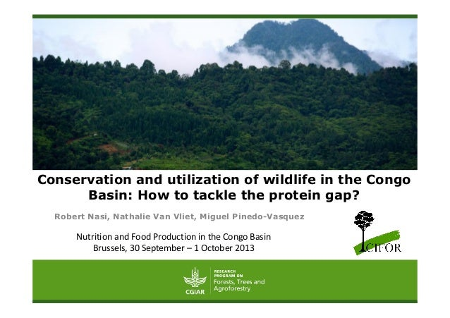 Conservation and utilization of wildlife in the Congo Basin: How to tackle the protein gap? Robert Nasi, Nathalie Van Vlie...