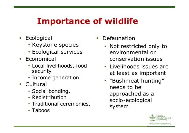 Importance of wild animals