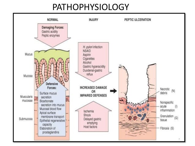 7  PATHOPHYSIOLOGY
