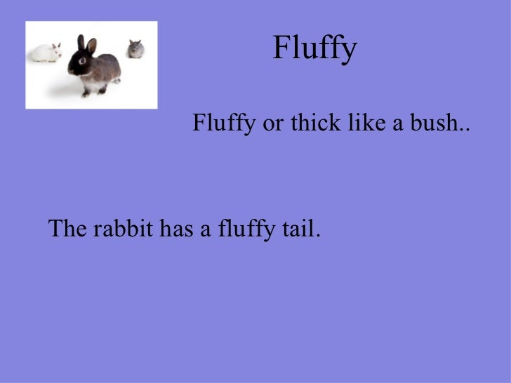 Fluffy  Fluffy or thick like a bush.. The rabbit has a fluffy tail.