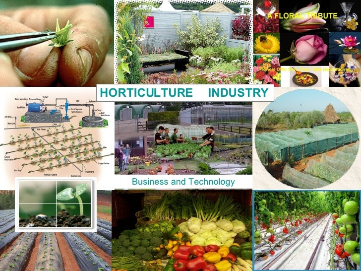 HORTICULTURE  INDUSTRY Business and Technology