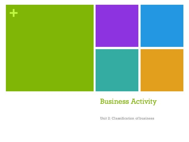 +  Business Activity Unit 2: Classification of business