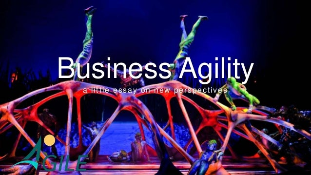 Business Agility a little essay on new perspectives