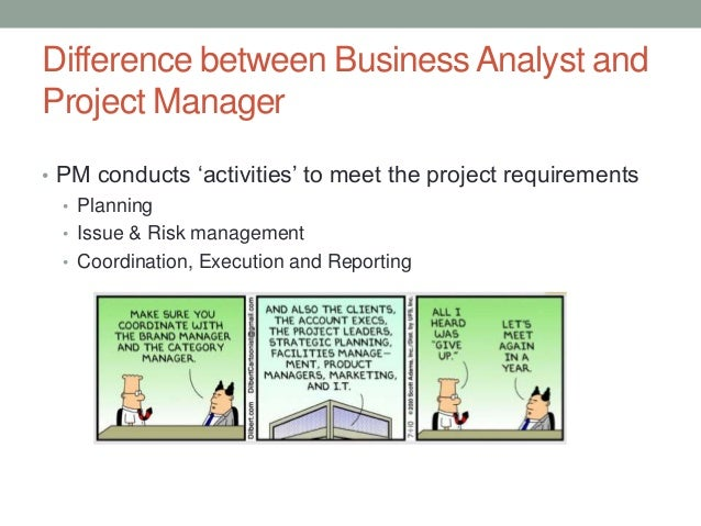 Business analysis & project management