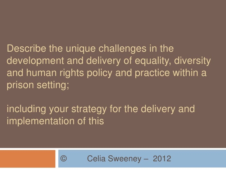 Describe the unique challenges in thedevelopment and delivery of equality, diversityand human rights policy and practice w...