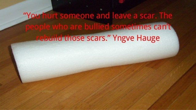 """""""You hurt someone and leave a scar. The people who are bullied sometimes can't rebuild those scars."""" Yngve Hauge"""