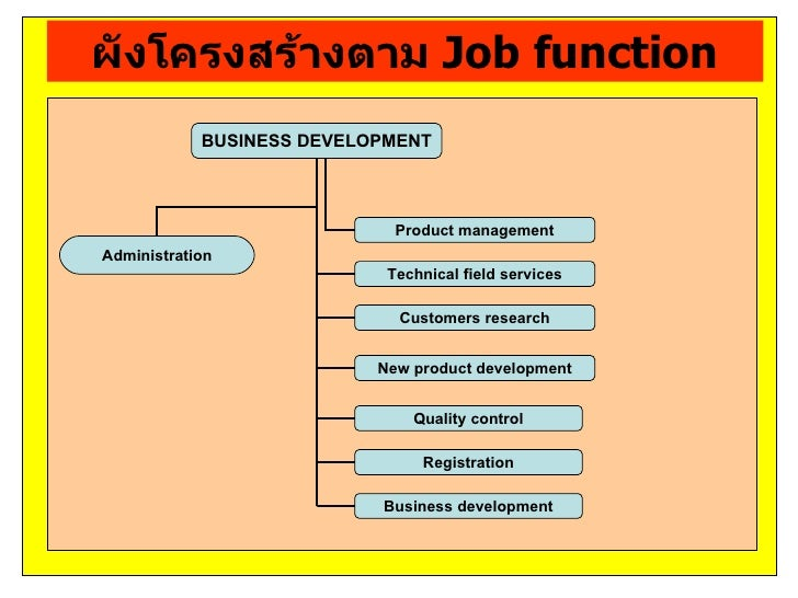 ผังโครงสร้างตาม Job function            BUSINESS DEVELOPMENT                             Product managementAdministration ...