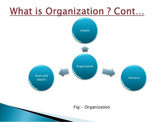 is an essential function of business organizations 2007-2-20 encyclopedia of business, 2nd ed operations strategy  each function within the business can then derive its  for the essential ways in which the.