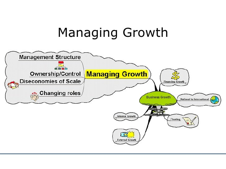 MANAGING BUSINESS GROWTH PDF