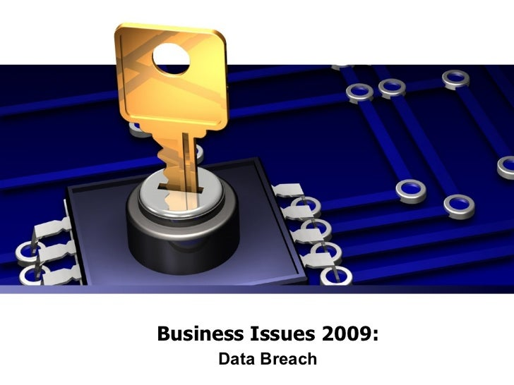 Business Issues 2009: Data Breach