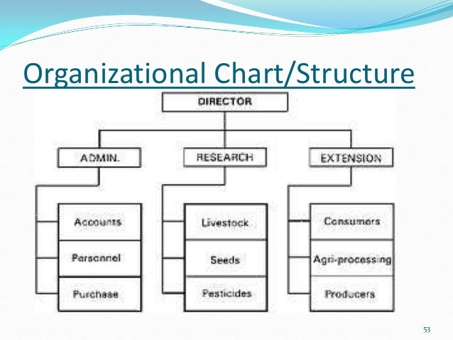 mgt 401 the small business structure Mgt 401 the small business structure planning and funding question mgt 401 the small business structure planning and funding week 1 individual assignment: strategic management process paper.