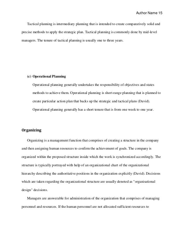 business plan thesis