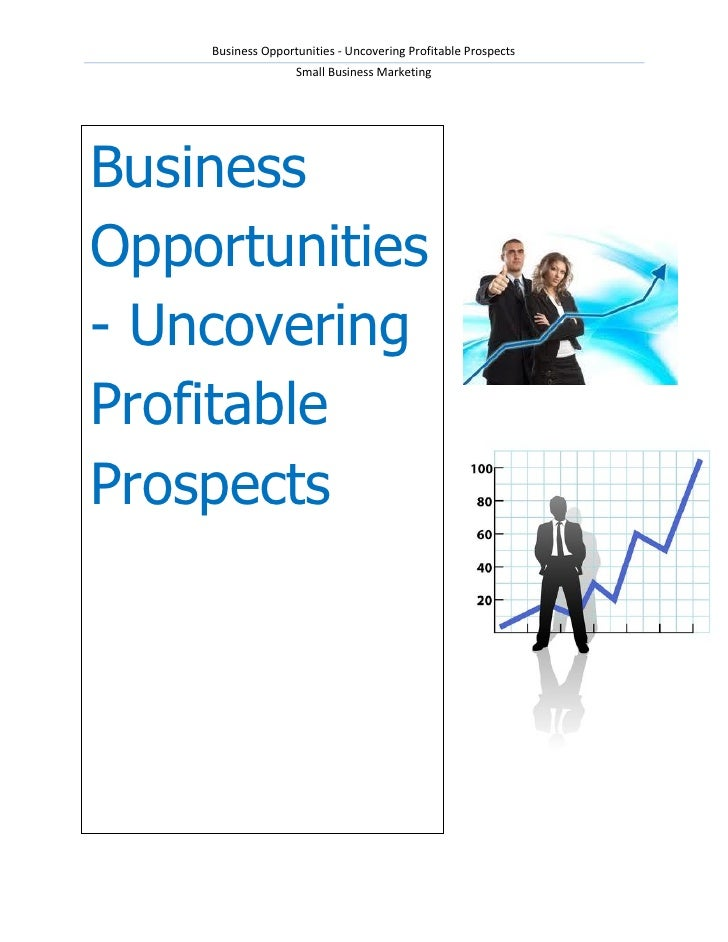 Business Opportunities - Uncovering Profitable Prospects                   Small Business MarketingBusinessOpportunities- ...