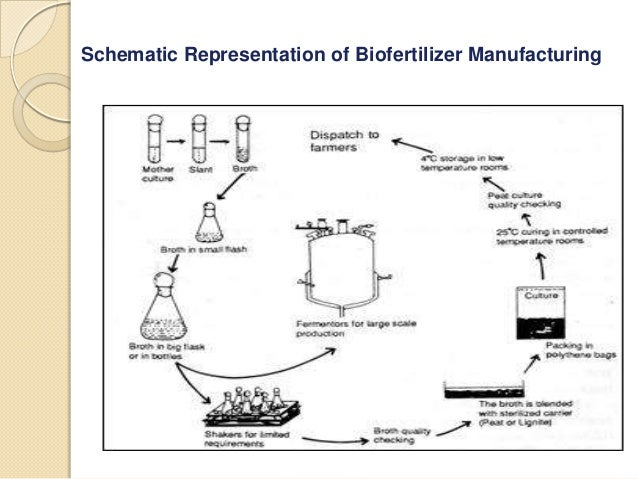 Biofertilizer Market To Register Remarkable Growth By 2022