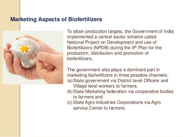 Biofertilizer Business Plan