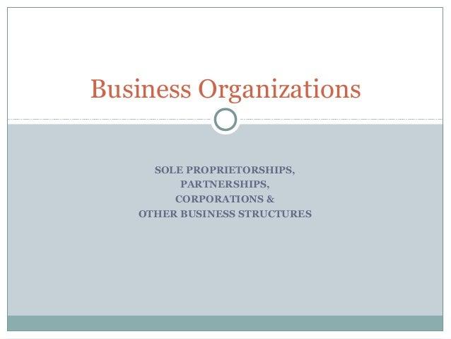 SOLE PROPRIETORSHIPS,PARTNERSHIPS,CORPORATIONS &OTHER BUSINESS STRUCTURESBusiness Organizations